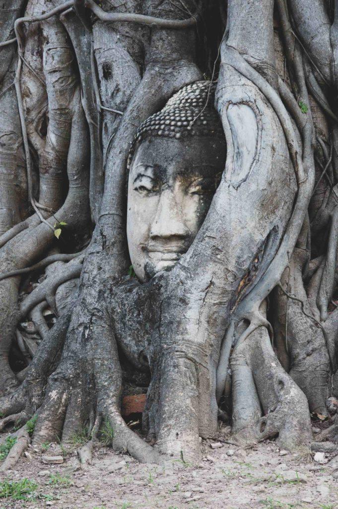 Testa Buddha Wat Mahathat