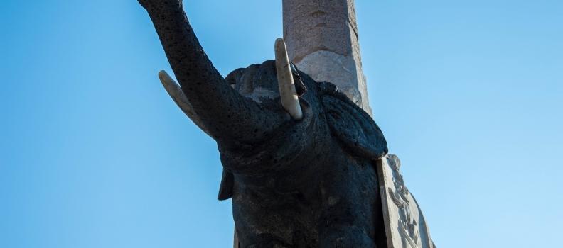 Cinque cose da fare a Catania