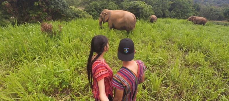 Cinque cose da fare a Chiang Mai